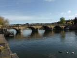 About to cross the river at Henley Bridge.