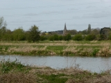 The church spire in Cassington on the opposite bank.